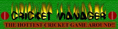 Cricket Manager Logo Entry